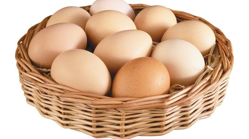 Мифы и реальность о пользе и вреде куриных яиц.