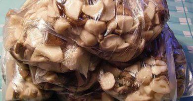 Как заморозить грибы обабки на зиму в морозилке: 4 способа.