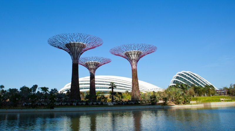 Великолепие оранжерей Сингапура