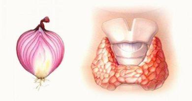 Целебный лук для лечения щитовидной железы.