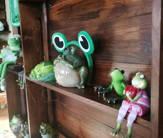 В Тверской области открылся музей лягушки.