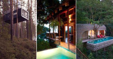 10 экзотических отелей на деревьях.
