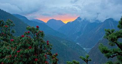 Красоты Индийских Гималаев.