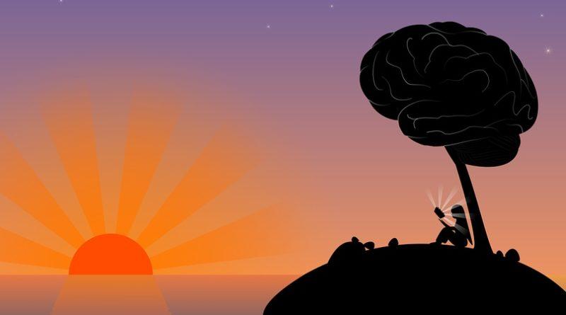 Как натренировать мозг для лучшей производительности?