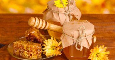 Полезные свойства и сорта меда, о которых вы, возможно, еще не знали