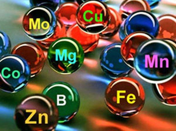 Что мы знаем о минералах? Так ли они важны? Или можно обойтись и без них?