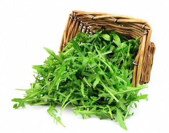 Вкусные и полезные салаты из рукколы