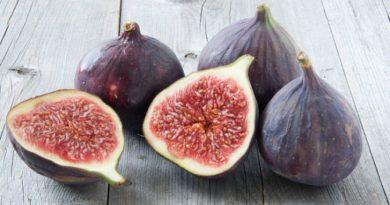 Смоковница, винная ягода, фиговое дерево или просто инжир
