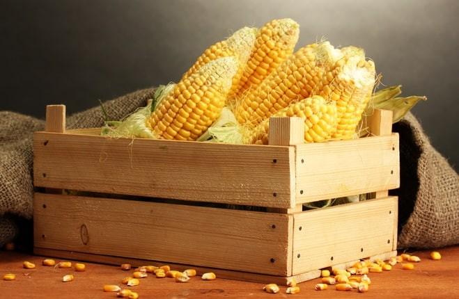 Консервированная кукуруза: 3 рецепта на любой вкус