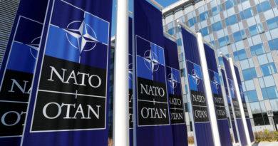 «Разлом будет усиливаться»: с какими проблемами столкнулся Североатлантический альянс в 2019 году