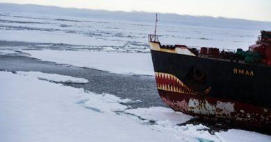 Россия доминирует в Арктике, но бороться за нее не собирается