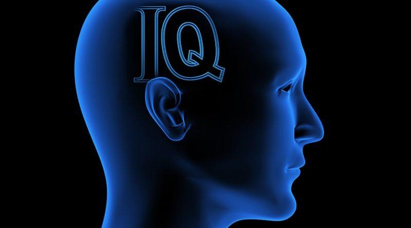 Ученые нашли связь между вегетарианством и IQ