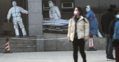 ВОЗ проведет экстренное заседание из-за нового коронавируса в Китае