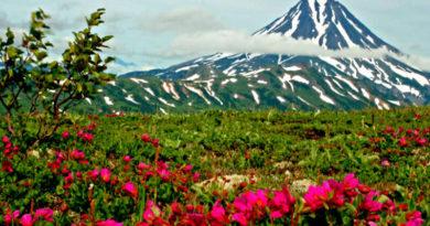 Долина роз. Болгария. Казанлук