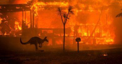 В Австралии более трех тысяч военных будут бороться с пожарами