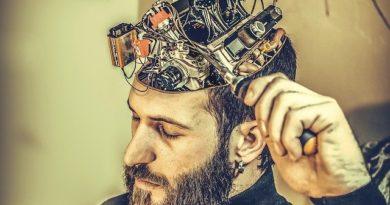 10 «подарков» для мозга, в которых он нуждается каждый день