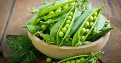Кому показано есть зеленый горошек? – Польза и вред продукта