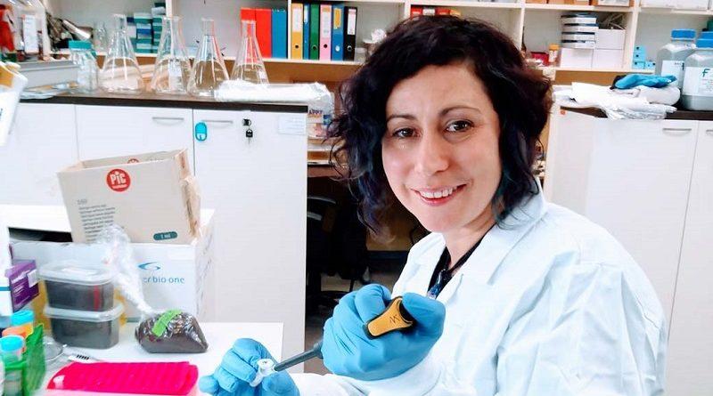 В Израиле создана и тестируется вакцина против коронавируса