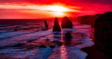 Австралия и Новая Зеландия открывают пляжи