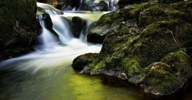Путешествие в Ирландию — страну суровых скал и древней архитектуры