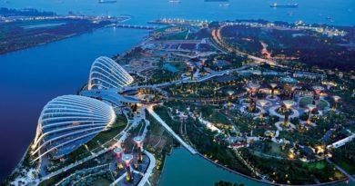 Сингапур продлевает карантин до лета