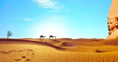 Египет готовится принимать туристов в июле