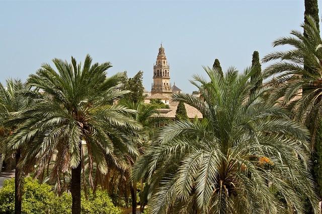 Испанские курорты поделят пляжи на сектора для безопасности отдыхающих