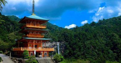 Япония продлевает режим ЧС до лета