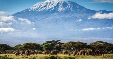 10 фактов об удивительной горе Килиманджаро