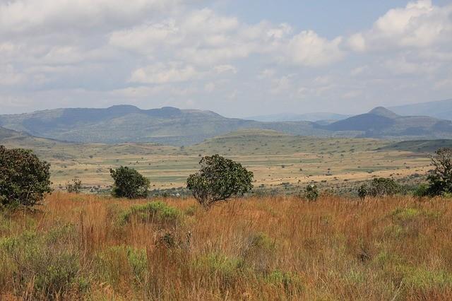 ЮАР не ждет туристов до февраля 2021 года