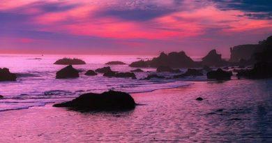 Калифорния: Вы этого не знали