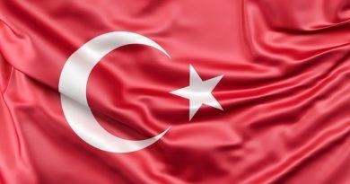 Президент Турции попросил президента РФ пустить российских туристов на турецкие курорты