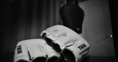 Рейтинг лучших бойцов смешанных единоборств MMA