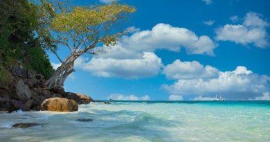 С 01.07.2020 Таиланд откроется для оздоровительного туризма