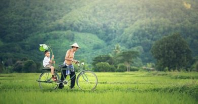 Таиланд: туристические объекты начнут работу раньше срока