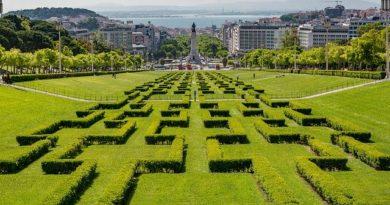 В Португалии упростили процедуру продления и получения ВНЖ