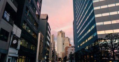 Власти Японии расширили перечень стран, въезд из которых запрещён