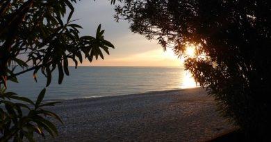 Абхазия: отели будут принимать туристов только при наличии теста на коронавирус