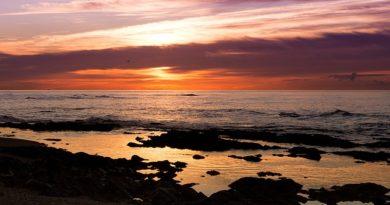 Испания закрывает пляжи из-за возможного роста заболеваемости