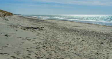 Отдых на берегу Балтийского моря. Куршская коса
