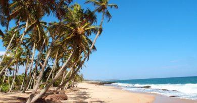 Шри-Ланка готовится открыть свои границы для туристов с 15.08.2020