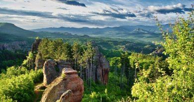 Болгария: условия выдачи мультивиз гражданам РФ