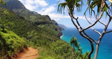Гавайи перенесли дату открытия границ для туристов