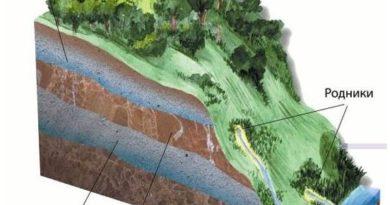 Как правильно сделать дренаж на участке с высоким уровнем грунтовых вод
