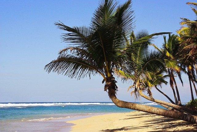 Пляжный отдых на курорте Пунто-Кана (Доминикана)