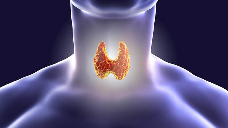 Домашний способ проверить щитовидку