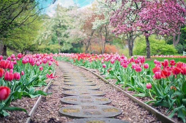 Идея ландшафтного дизайна. Сад в современном стиле