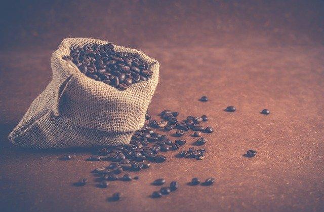 Кофе копи-лювак — элитный кофе или маркетинговая уловка