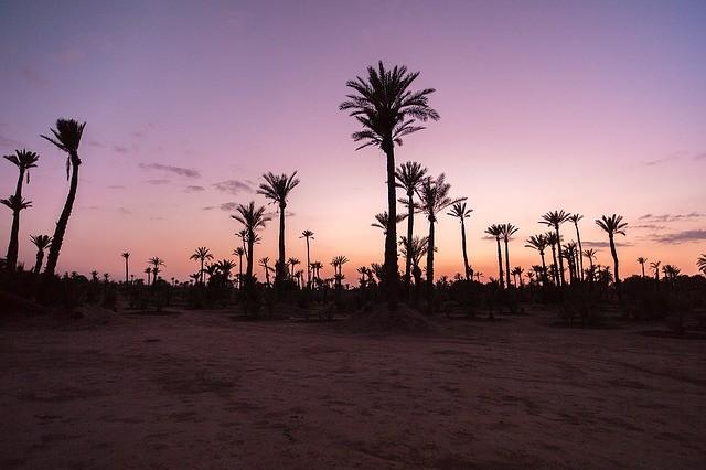На днях Марокко начнет принимать иностранцев