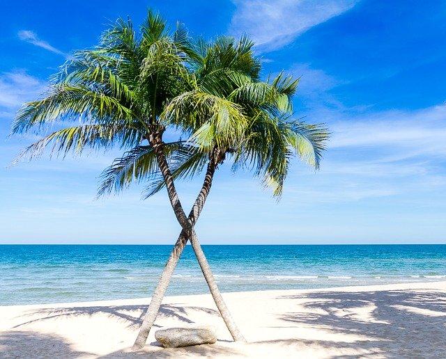 Туристические направления, где царит вечное лето